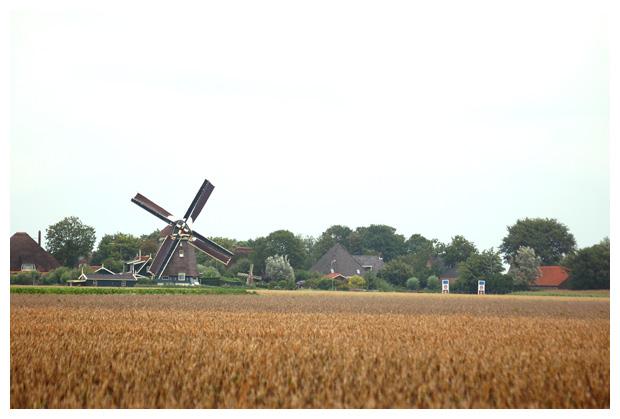 foto's, Groenveld, Noord-Holland, Nederland