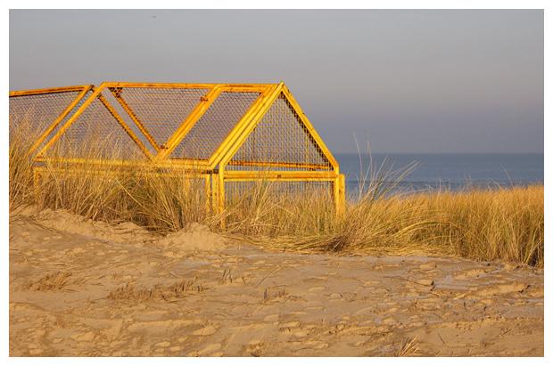foto's, strand, Sint Maartenszee, Noord-Holland, zee, duinen, strandfoto´s