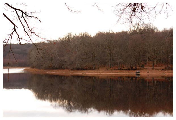 foto's, l'Étang du Merle, Nièvre, Bourgondië, Frankrijk