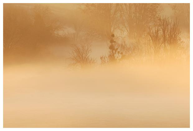 foto's, Mist, mistig, damp, dampig