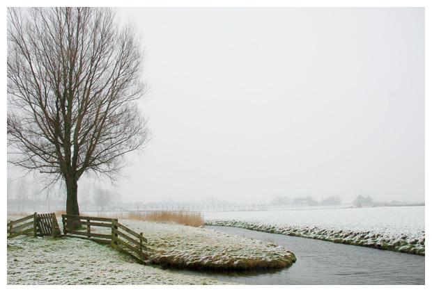 sneeuw, besneeuwd, sneeuwlandschap, sneeuwlandschappen