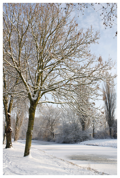 foto's, Acaciapark  Schagen