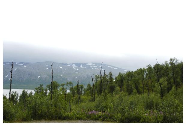 foto's, Västerbottens län, Zweden