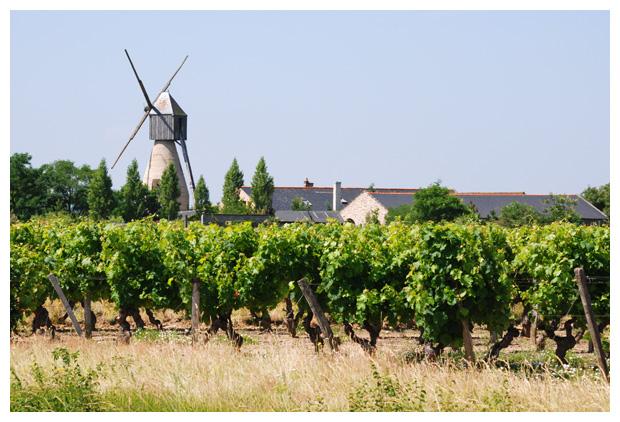 foto's, Regio Pays de la Loire, departement Frankrijk, France, steden, stad, vakantiefotos