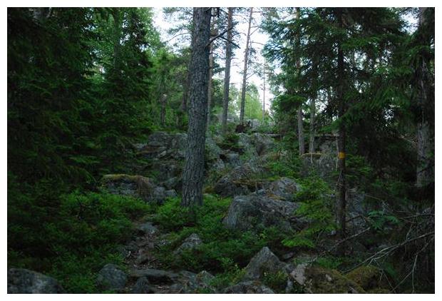 foto's, Hölick, Gävleborgs län, Zweden, Norrland