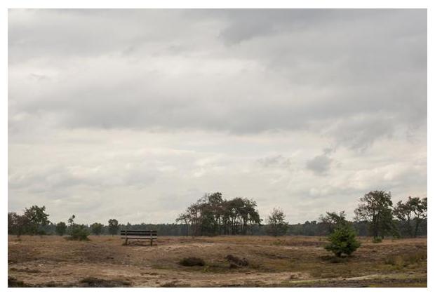 foto's, natuurgebied, Strabrechtse Heide, Noord-Brabant