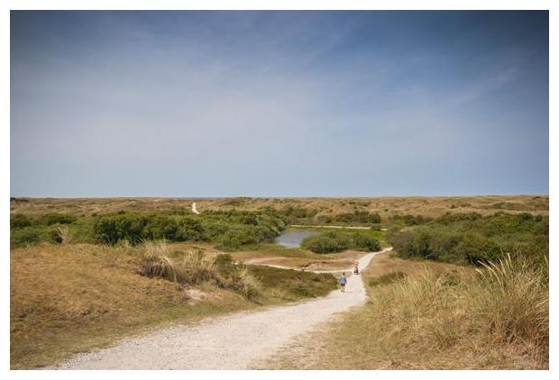 foto´s, natuurgebied, Pettemerduinen, Noord-Holland, Nederland