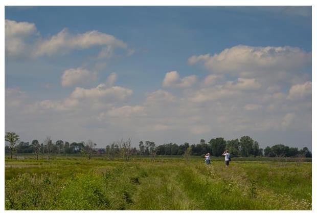 foto's, natuurgebied Zuidlaardermeergebied, Oosterpolder, Groningen, Nederland