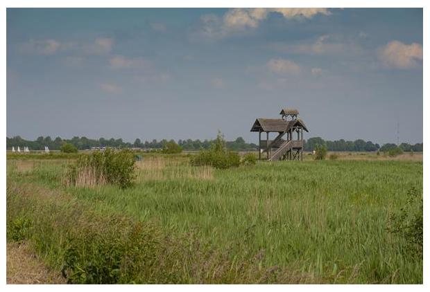 foto's, natuurgebied Zuidlaardermeergebied, Uitkijktoren Oosterpolder, Groningen, Nederland