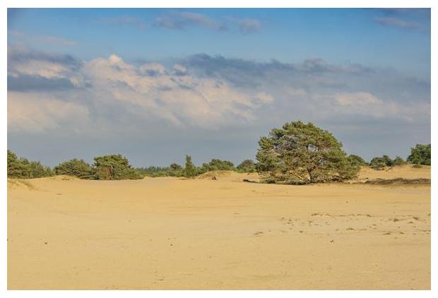 foto's, Aekingerzand, Nationaal Park Drents-Friese Wold, Drenthe, Friesland, Nederland