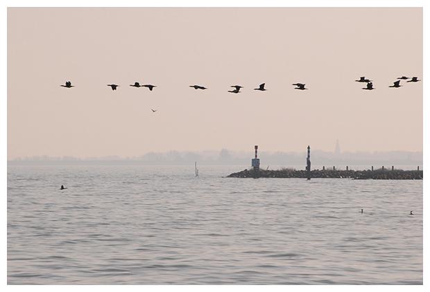 foto's, IJsselmeer, Noord-Holland, Nederland