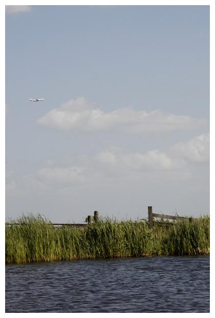 foto's, Natuurgebied, Wormer- en Jisperveld, Nederland