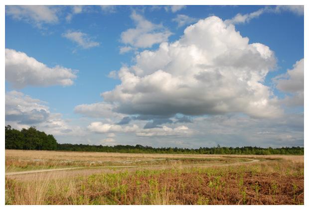 foto's, Haaksbergerveen, Overijssel