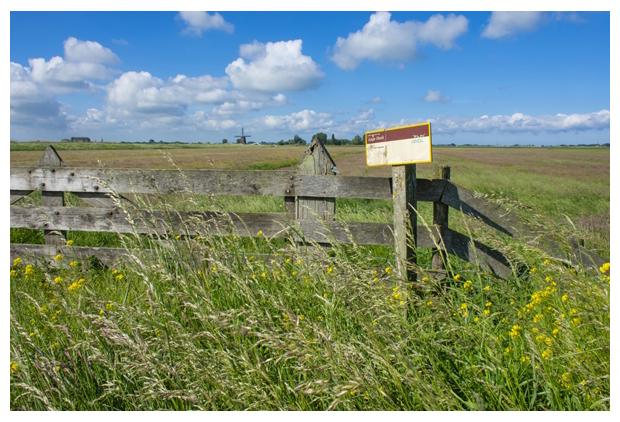 foto's, Natuurgebied Lage Hoek, Opmeer, Landschap Noord Holland