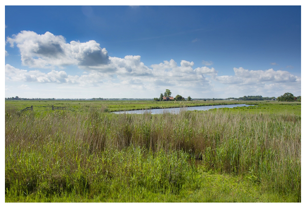 foto's, Natuurgebied Kootwijkse Veld