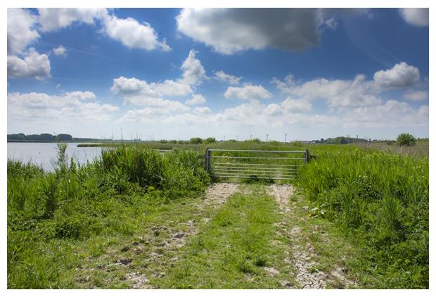 foto's, Natuurgebied Waterberging Twisk en Oostermare, Landschap Noord Holland