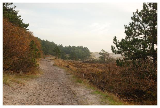 foto's, Hargen, Bergen, Noord Holland, Nederland