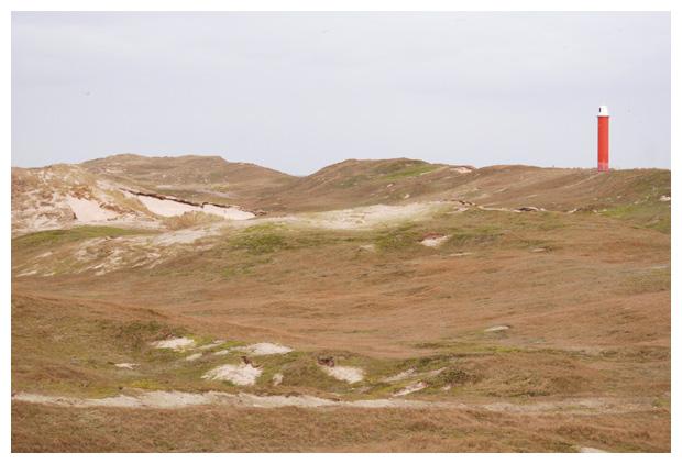 foto's, Botgat, duinen, Grote Kaap