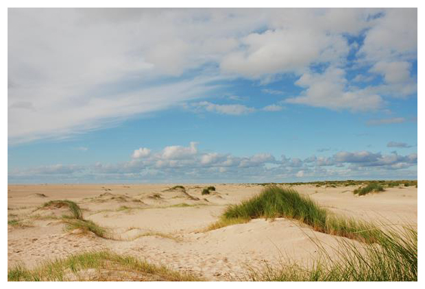 foto´s, Texel, Noord-Holland, Nederland