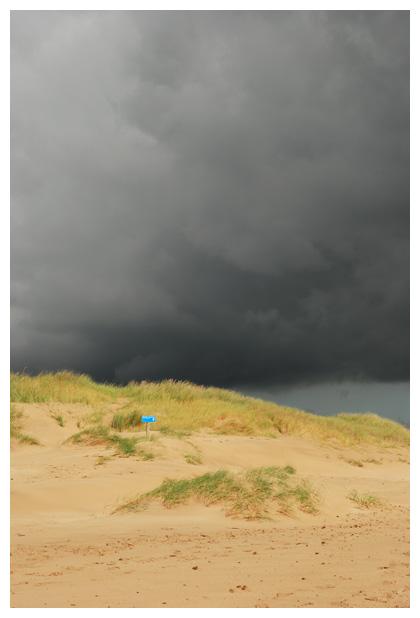 foto's, Bergen, Noord-Holland, Schoorlse duinen