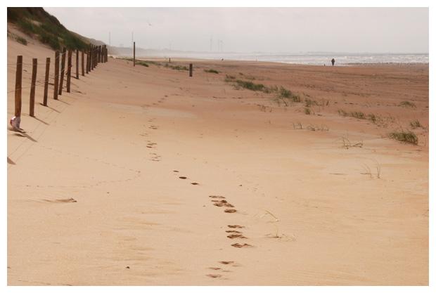 foto's, strand, Castricum aan Zee, Noord-Holland, zee, duinen, strandfoto´s
